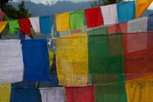 Prayer Flags we Placed at Taktsang.