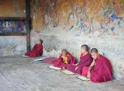 Monks doing their homework.